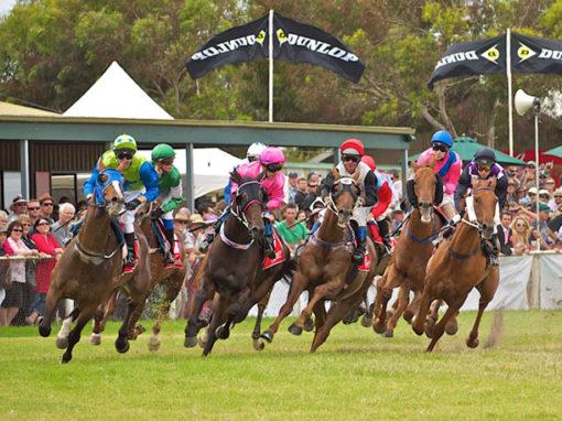Horse Racing Carnival